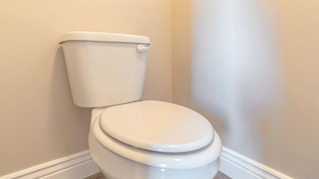 Elongated Toilets