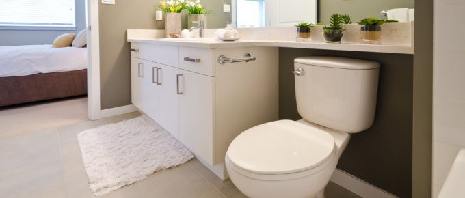 Skirted-Toilets