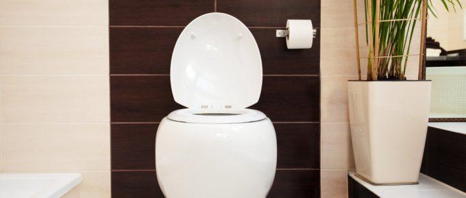 Swiss-Madison-Toilet-Reviews