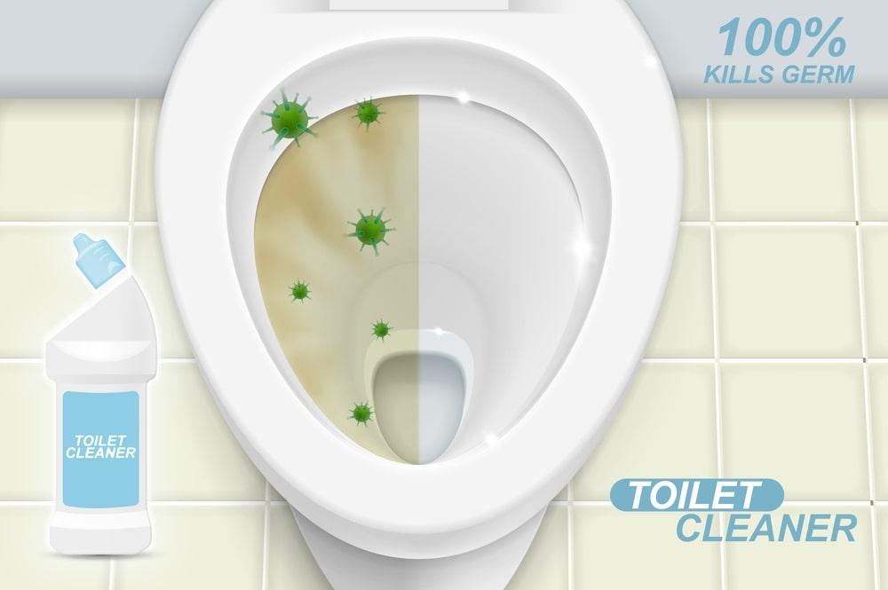 Toilet Cleaner UK